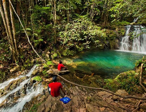 belize-jungle-hike